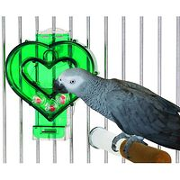 Mastermind Heart Bird Toy