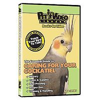 Caring for your Cockatiel DVD