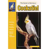 Cockatiel - The Guide to Owning