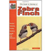 Zebra Finch - The Guide to Owning