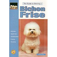 Bichon Frise - Guide to Owning