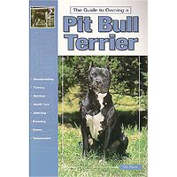 American Pit Bull Terrier - Guide to Owning