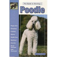Poodle - Guide to Owning