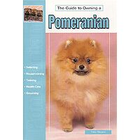 Pomeranian - Guide to Owning