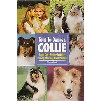 Collie - Guide to Owning