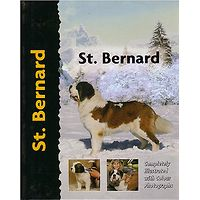 St. Bernard - Pet Love
