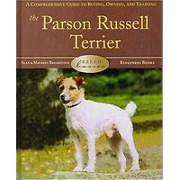 Jack Russell Terrier (Parson) - Breed Basics
