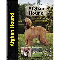 Afghan Hound - Pet Love