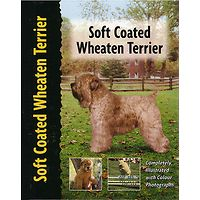 Soft Coated Wheaten Terrier - Pet Love