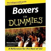 Boxers for Dummies