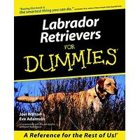 Labrador Retrievers for Dummies