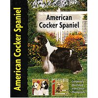 American Cocker Spaniel - Pet Love