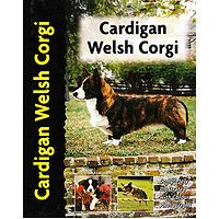 Cardigan Welsh Corgi - Pet Love