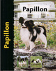 Papillon - Pet Love