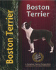 Boston Terrier - Pet Love