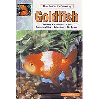 Goldfish - Guide to Owning