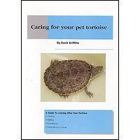 Caring for your pet Tortoise