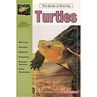 Turtles - Guide To Owning