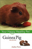 Guinea Pig Your Happy Healthy Pet