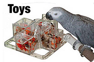 Toys for birds and parrots