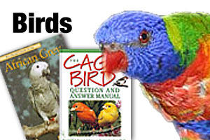 Bird books, DVDs and CDs