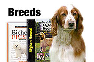 Dog Breed Books