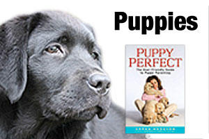 Books for puppy owners and breeders
