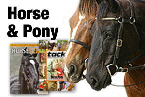 Horse, pony and equestrian books
