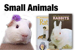 Books on rabbits, ferrets, mice and other small animals