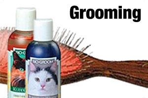 Grroming products for cats and kittens
