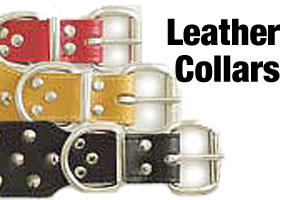 Leater dog collars