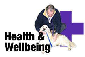 Dog healthcare products