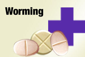 worming tablets for dogs and puppies
