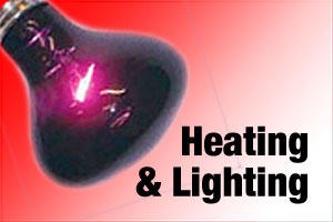 Heating and lighting products for reptiles, snakes and lizards