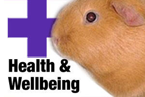 Health care products for small animals