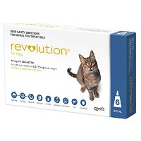 Revolution for Cats - Blue 6pk