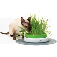Catit Senses 2.0 Grass Planter + Seeds