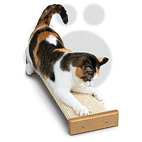 Bootsie Combination Scratcher