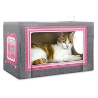 T & T Pablo Photo Booth Scratching Board for Cats