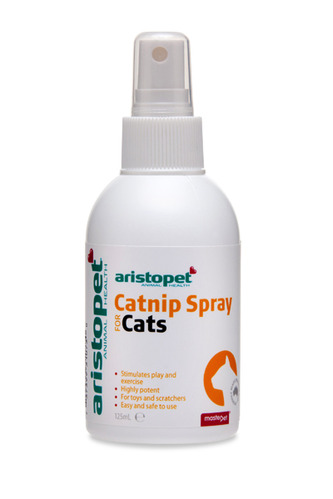 how to get male cat spray out of bed