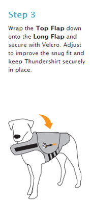 How To Measure Dog S Chest For Thundershirt
