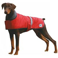 Dapper Dog Coat - Red