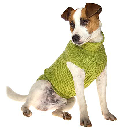 knit patterns for dog sweaters – Knit Patterns – Knitting Gear