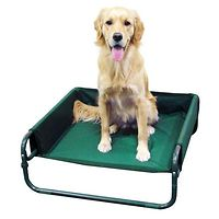 Comfort Raised Dog Bed