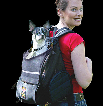 veternarian debbye turner the dog perch backpack is a superb backpack