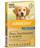 Advocate - Dogs over 25 kgs - 6 month pack