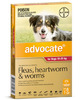 Advocate - Dogs 10-25 kgs - 6 month pack