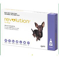 Revolution for Small Dogs 2.6-5kg - Purple 3pk
