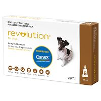 Revolution for Dogs 5.1-10kgs - Brown 6pk