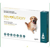 Revolution for Dogs 20.1-40kg - Teal 3pk